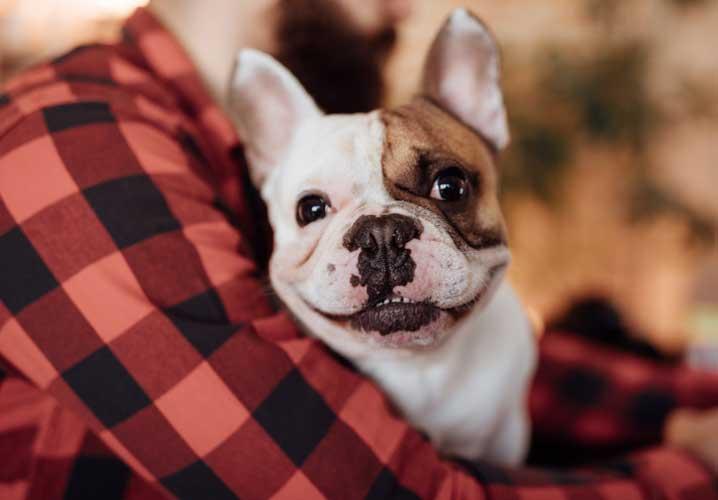 Man holding a smiling dog