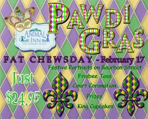 Pawdi Gras Flyer proof