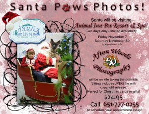Santa Paws electronic flyer