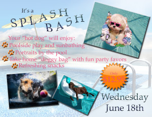 SplashBash